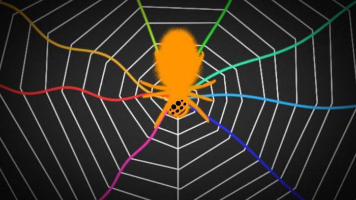 как паук плетет паутину между деревьями