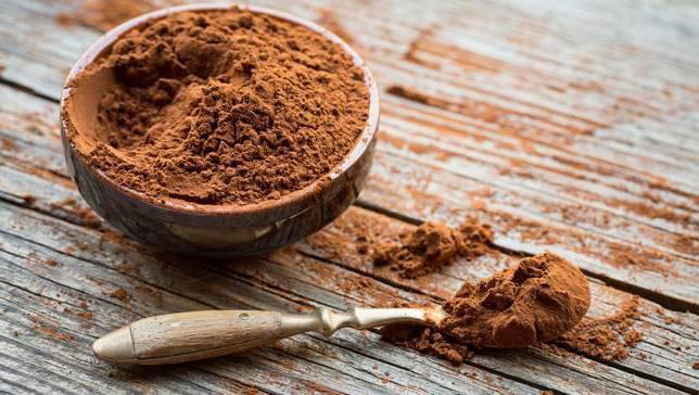 Что можно приготовить из какао порошка без молока и быстро
