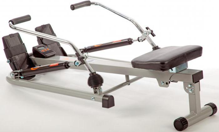 Rowing machine: what muscles work