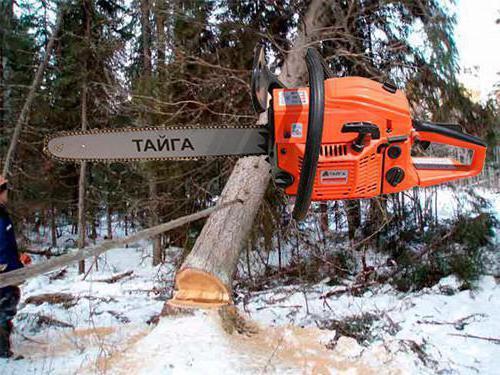 chainsaw taiga pro 4000