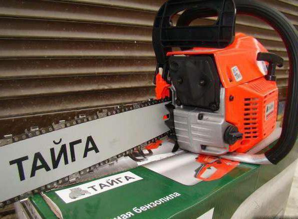 chainsaws taiga