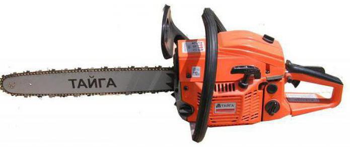 chainsaw taiga characteristic