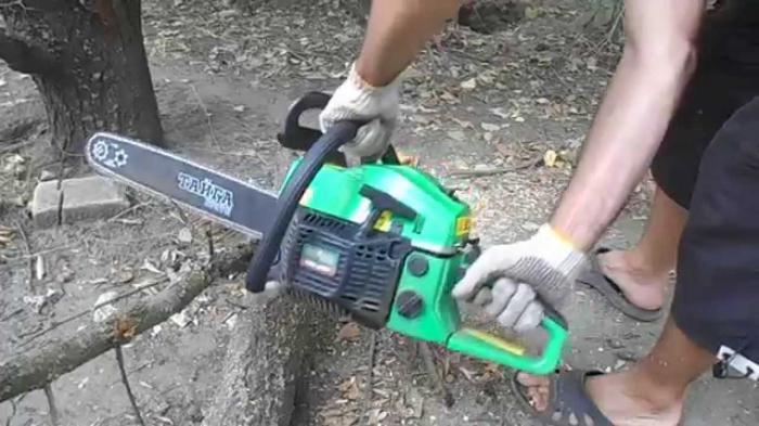 chainsaw taiga pro