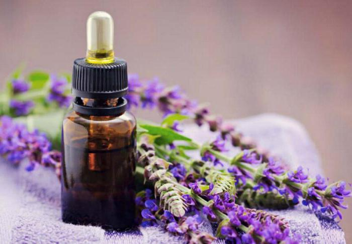 sage in menopause and tides how to take contraindications