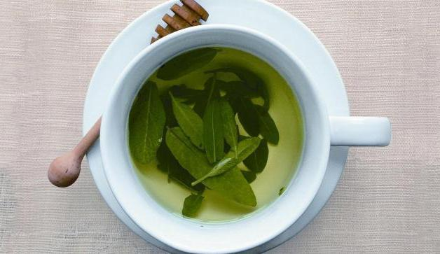 sage in menopause and tides how to take instructions
