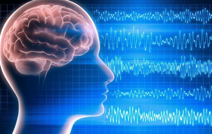 электроэнцефалография заключение