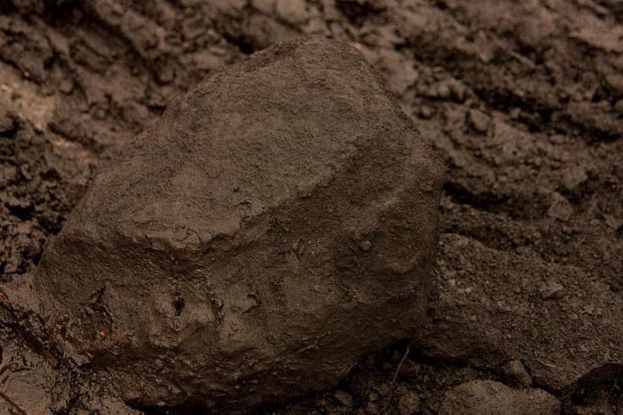 brown coal properties