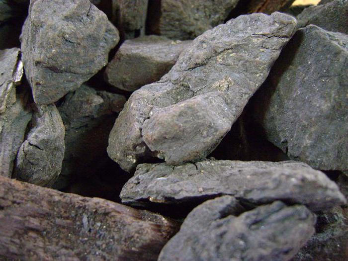 brown coal mining methods