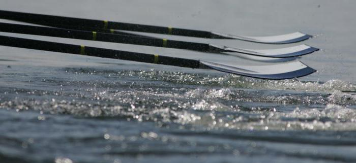 Sport: rowing