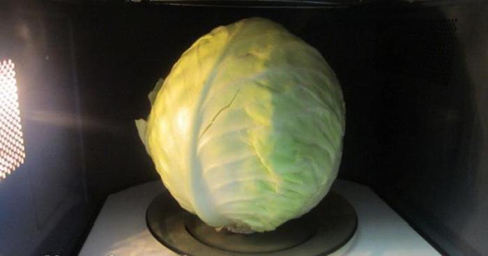 как приготовить капусту в микроволновке