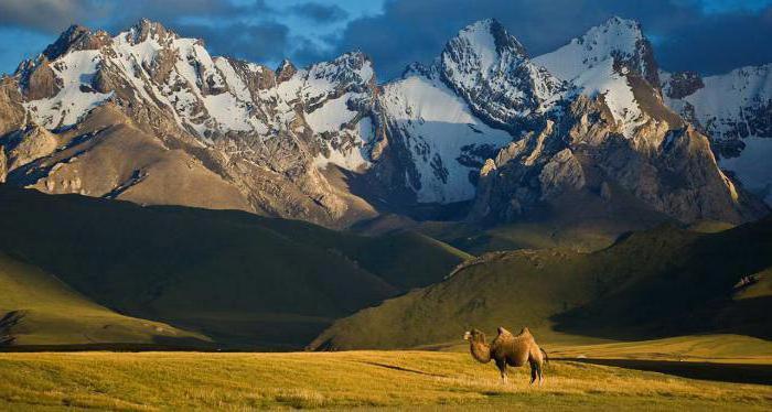 museums of Kyrgyzstan