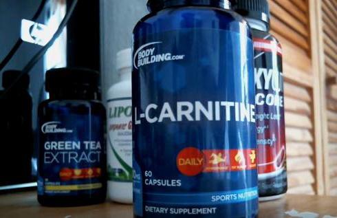 l carnitine powder take slimming