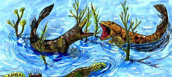 Devonian period of the Paleozoic era