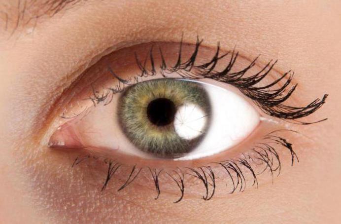 Программа гимнастика для глаз для улучшения зрения