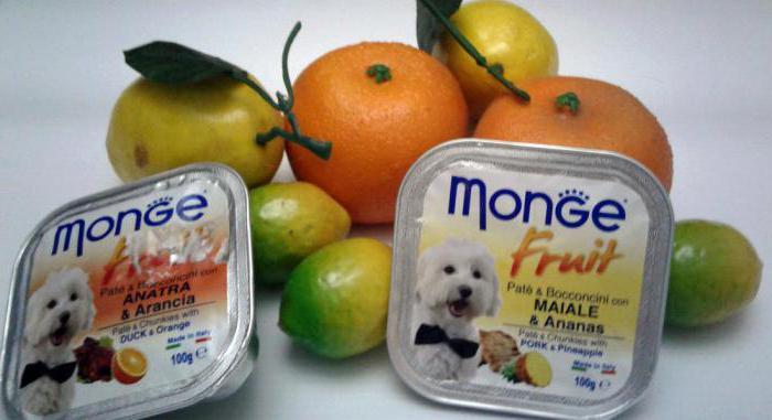 dog food monge for puppies