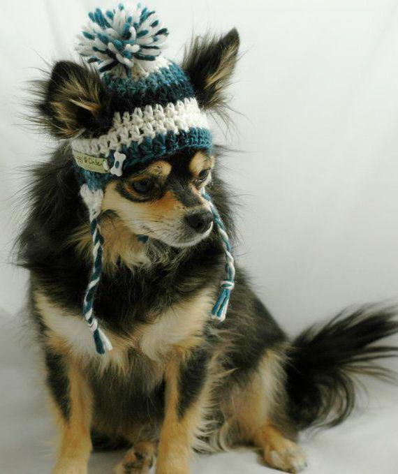 Вязаная шапка для собаки своими руками :: SYL.ru