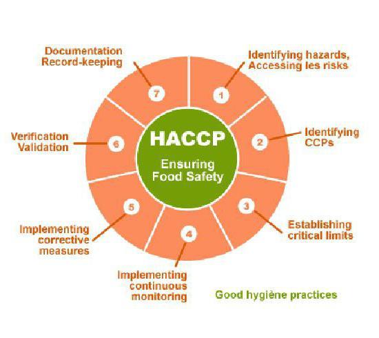 mcdonalds haccp plan