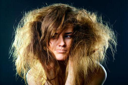 Зурхай стрижка волос на август