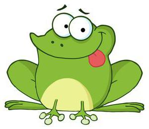 puzzle about a frog for children
