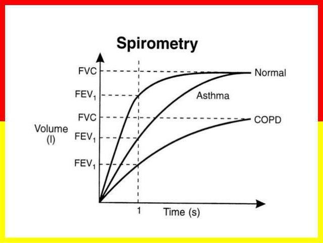 спирометрия нормальные показатели таблица
