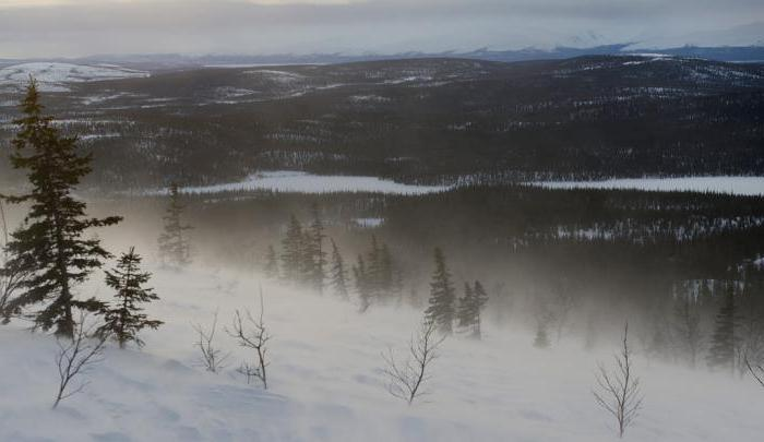 Lapland Reserve