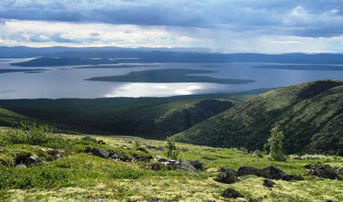 Lapland reserve Murmansk region