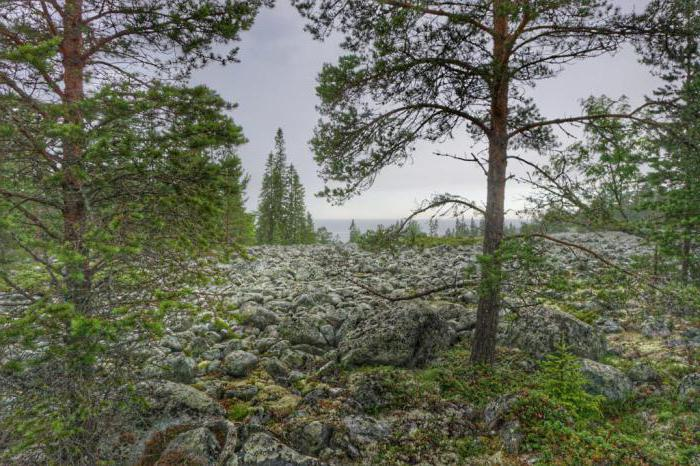 territory of the Lapland reserve