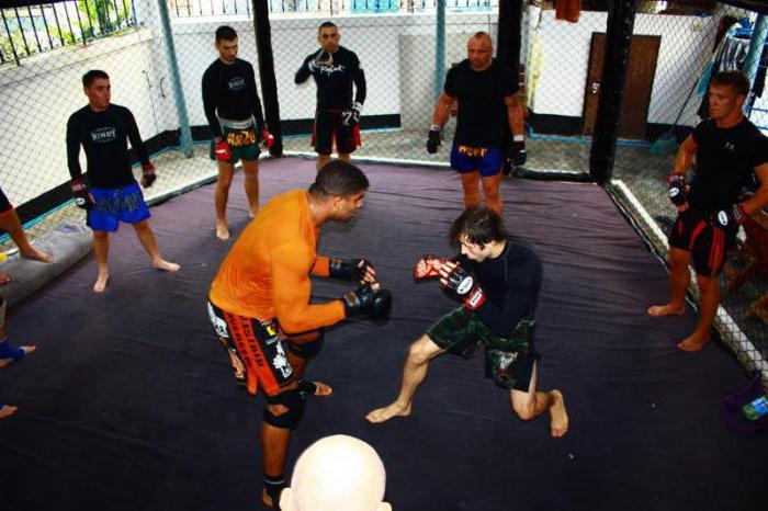 MMA training program