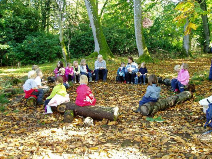 puzzles about the forest for children 3 4 years