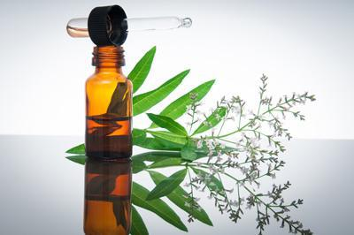 lycopodium homeopathy indications