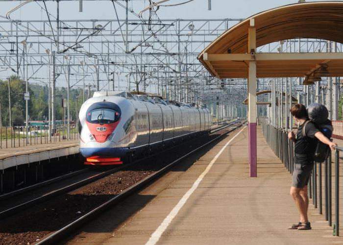 high-speed train peregrine falcon