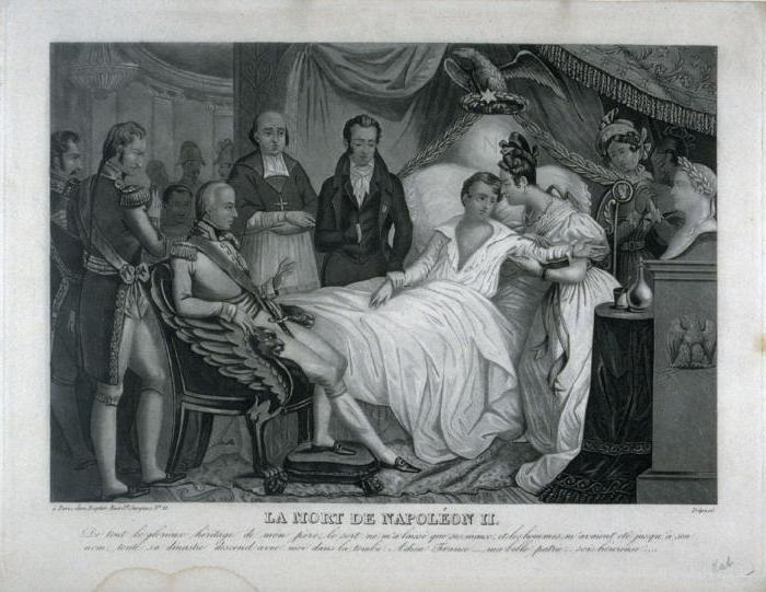 Napoleon ii biography