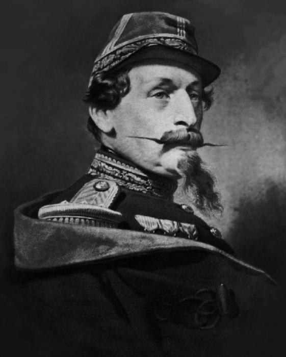Napoleon ii the son of the emperor