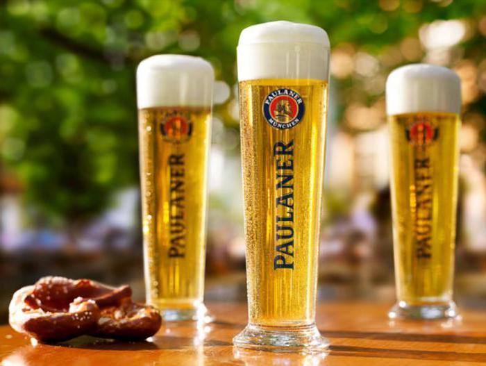 Beer paulaner reviews