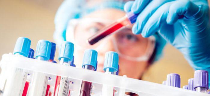 Общий анализ крови натощак можно
