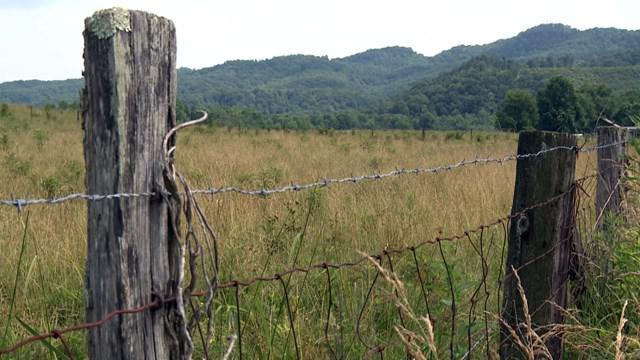 judicial land survey expertise