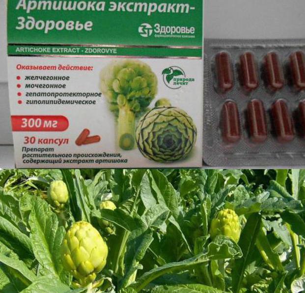 artichoke doctor reviews