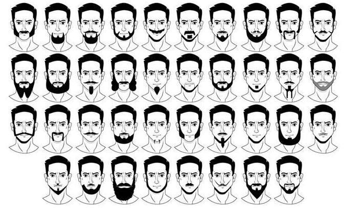 типы мужских бород