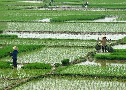 длина реки меконг