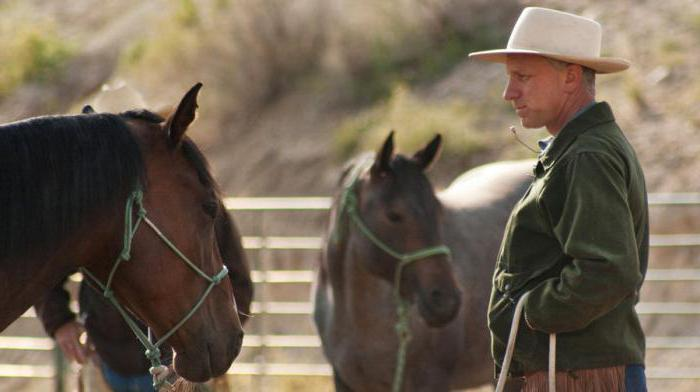 movies about horses list of the best
