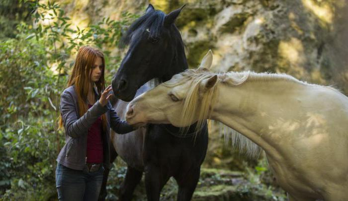 movies about horses full list