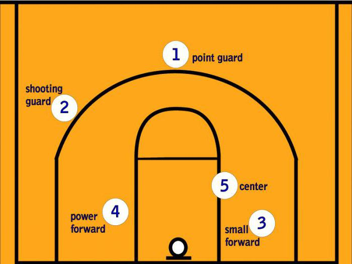 баскетболе от ставка с в