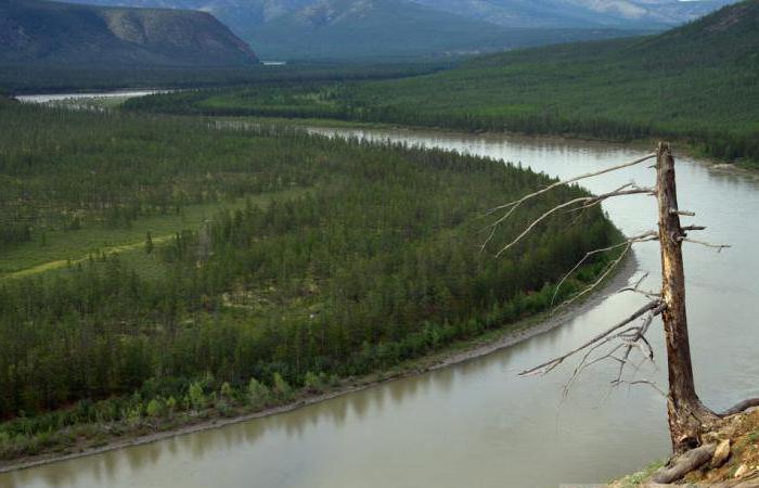 длина реки индигирка