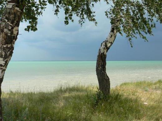 озеро Чаны. Новосибирская область