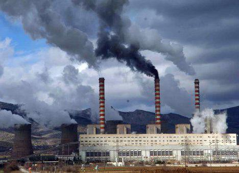 Economy of Vladivostok