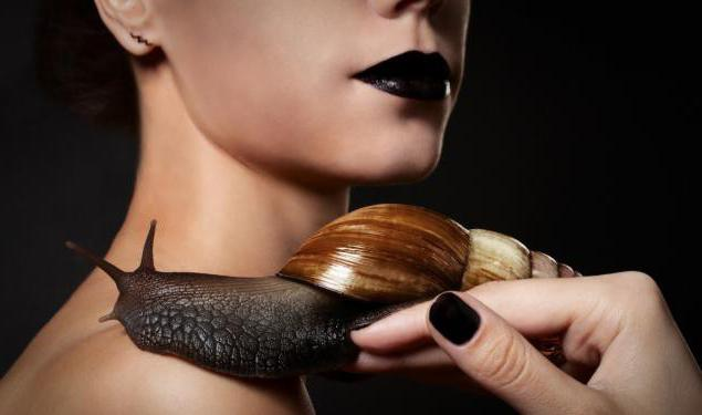 how to use snails Achatina in cosmetology