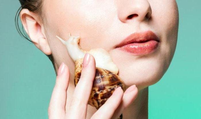 use of snails Achatina in cosmetology