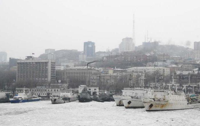 history of the icebreaker Vladivostok
