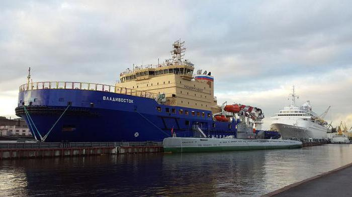 icebreaker Vladivostok photo