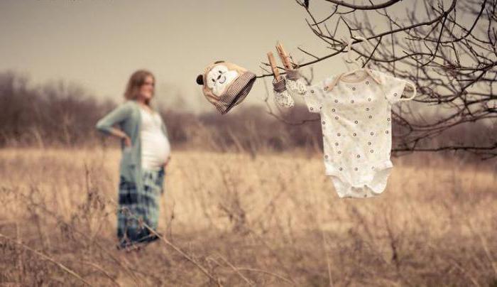 Plot Vanga on pregnancy